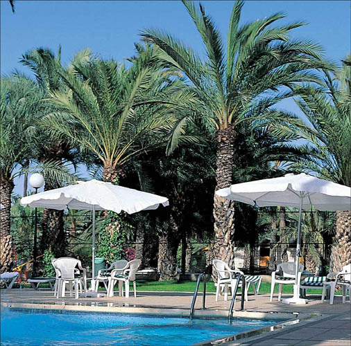 Hotel jard n milenio elx espa a for Hotel jardin del milenio