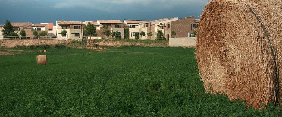 cardona rural: